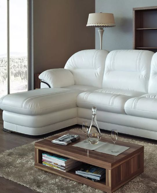 Чистка кожаных диванов на дому