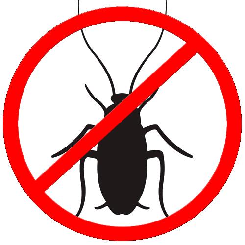 Cлужба по уничтожению тараканов